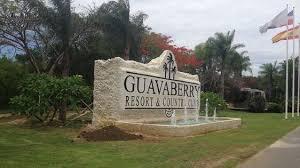http://zonadeofertasinmobiliariasrd.com/properties/brisas-de-guavaberry/